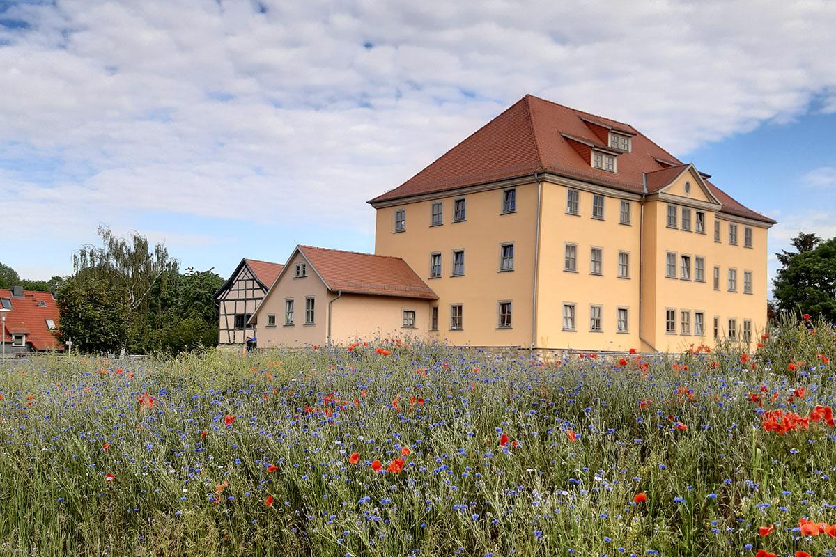 Burgen-Blick - Serie alte Gebäude - Domäne, Wechmar